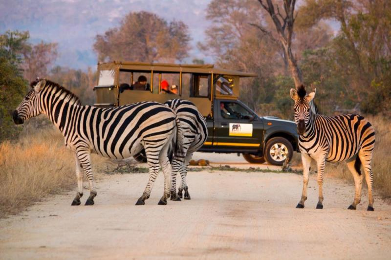 3-day Private Unfenced Kruger Plus Package