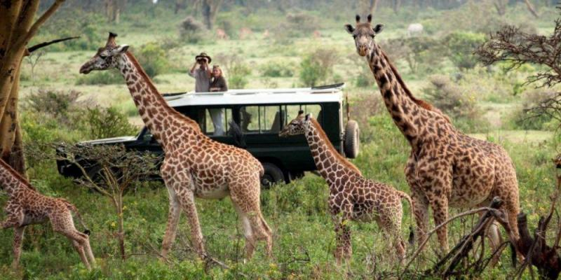 Add-on Platinum Game Lodge Package