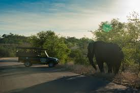 Add-on Private Unfenced Safari Camp Package