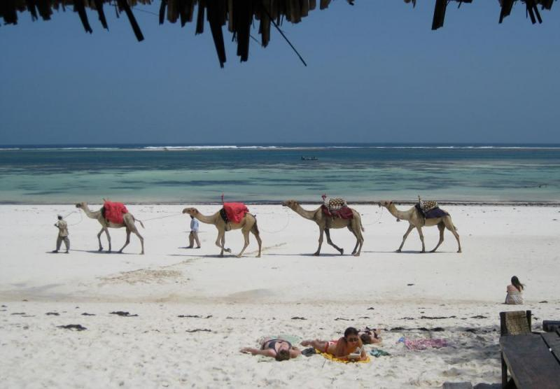 12 Days Luxury Kenya Safari And Beach Package Package