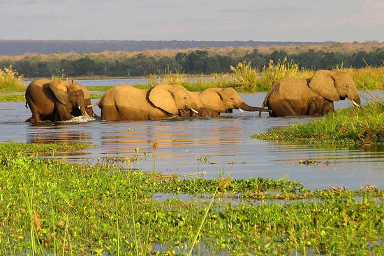 Kalahari And Okavango Adventure Package