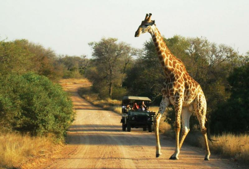 Spectacular South Africa 15 Days Guided Tour Package