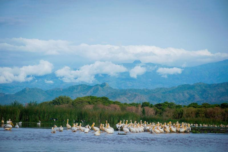Rift Valley Lakes Trip Package