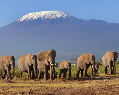 2 Days Nairobi Safari To Amboseli National Park Package