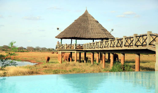 1 Day Mombasa Safari To Tsavo East National Park Tour