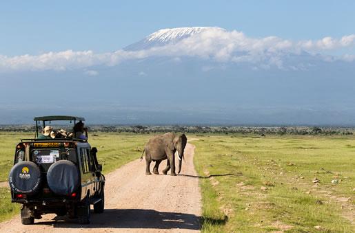 3 Days Mombasa Safari To Tsavo West And Amboseli Package