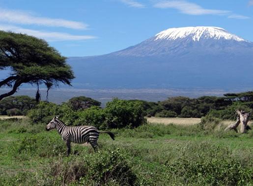 4 Days Safari From Nairobi To Amboseli, Tsavo West And Tsavo East Ending In Mombasa Package