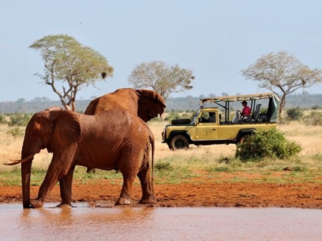 The Taru Safari Package