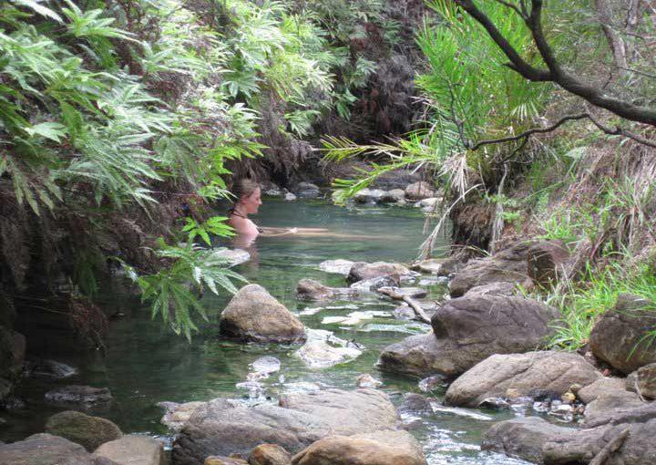 Safari Hot Springs Package