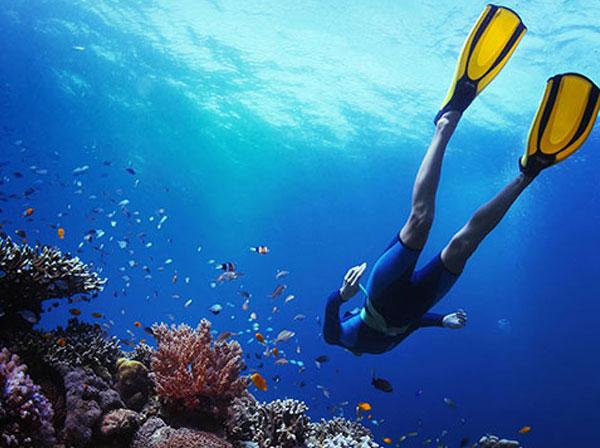Perhentian Island Resort - Snorkeling Fullboard Package