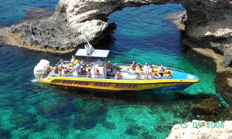 Dolphin Safari  Boat Trip Package