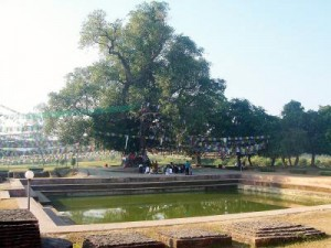 Manakamana Lumbini Pilgrimage Tour Package