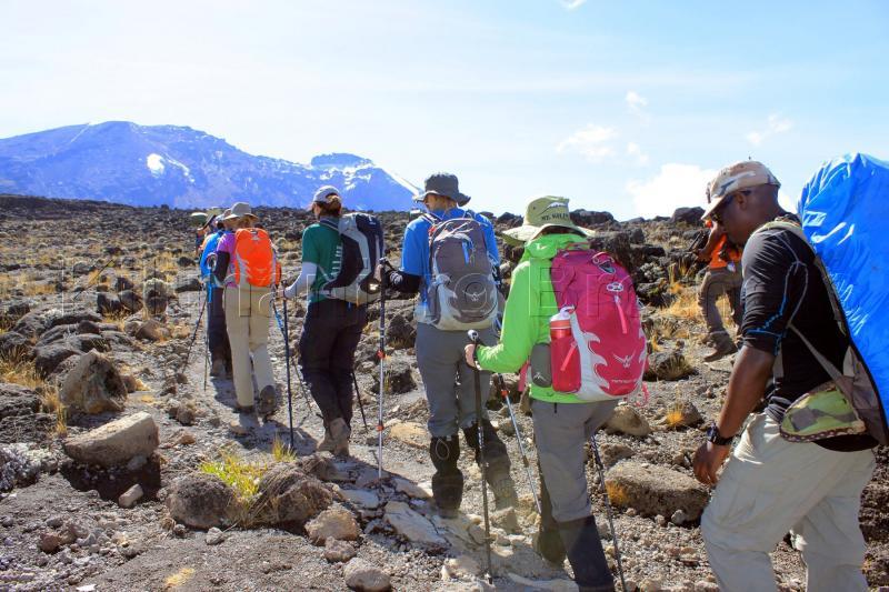 Kilimanjaro Trekking - 6 Days Shira Route Tour