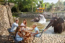 Breakfast With Orangutan And Bali Rafting Package