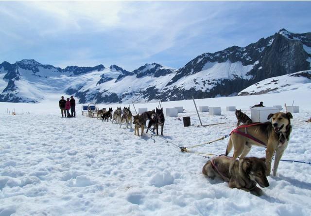 Juneau Dog Sledding & Glacier Helicopter Tour Package