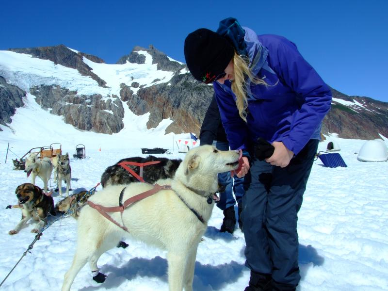 Juneau Glacier Dogsled Extended Tour Via Helicopter Package