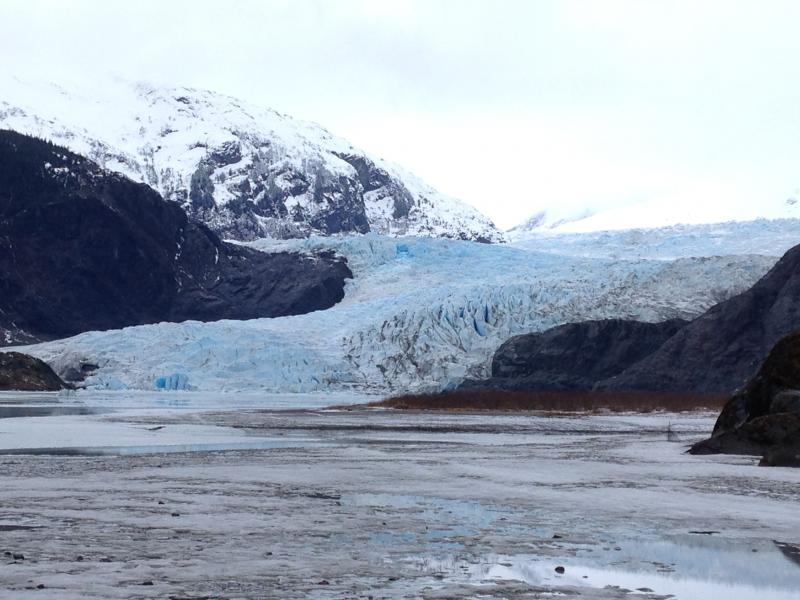 Juneau Whale Watching & Mendenhall Glacier Tour Package