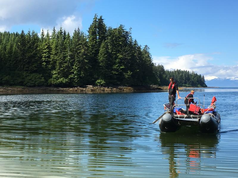 Sitka Full Day Wild Coast Paddle And Cruise Package