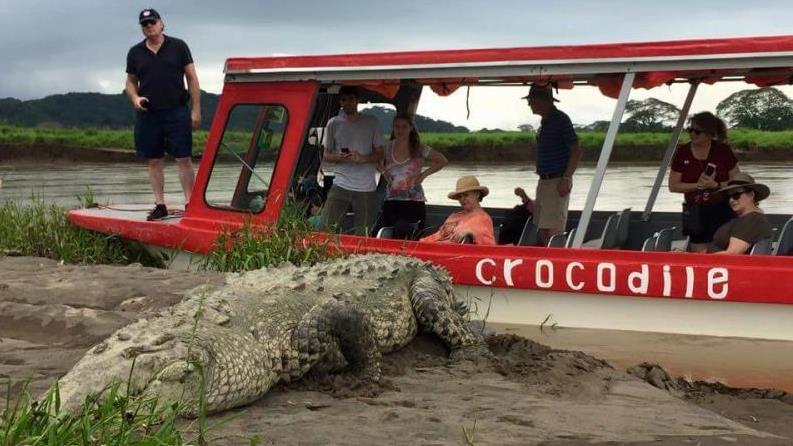 Horseback Adventure With Jungle River Cruise Combo Tour