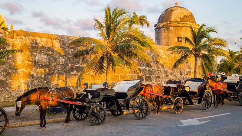 Your Private Horse - Drawn Carriage Cartagena Tour