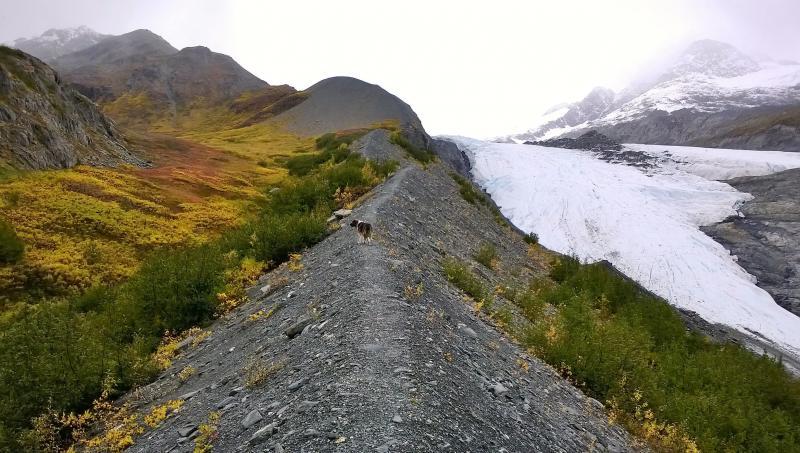 Half Day Worthington Glacier Hike Package
