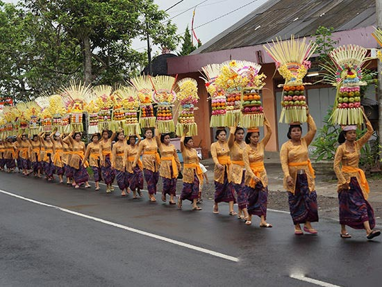 Nature And Culture Of Bali Package