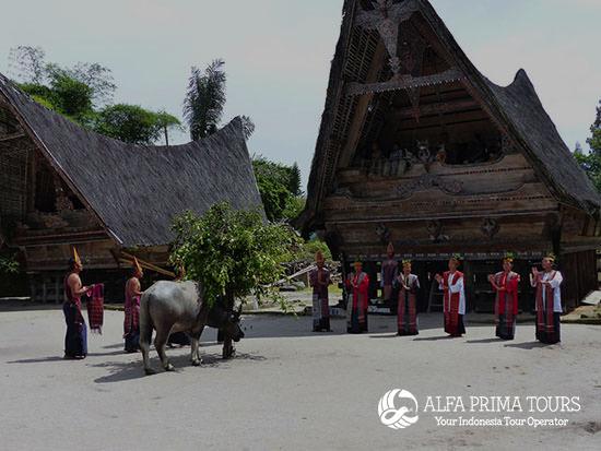 8 Days Sumatra Wildlife And Nature Package