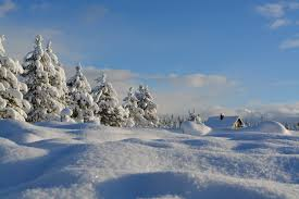 WINTER WONDER GUIDED TOUR Package