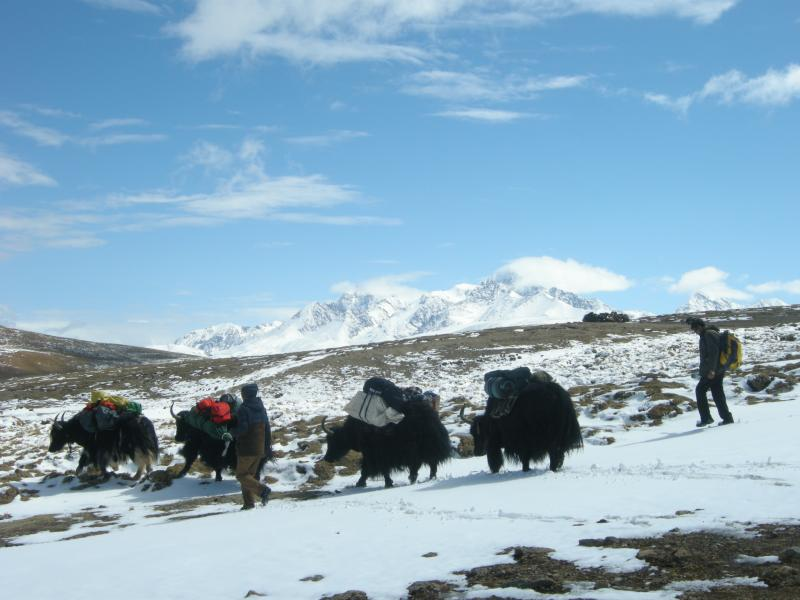 Lhasa EBC Trek Package