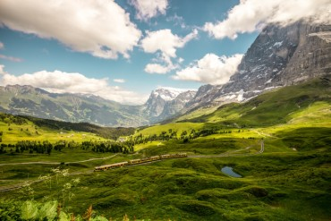 Jungfrau And Saas - Fee Wildflower Hikes Tour