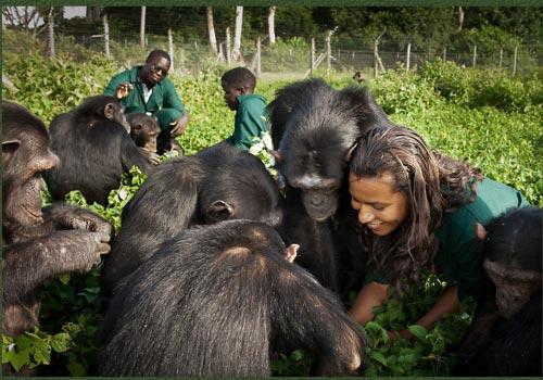 Stunning Adventurous Safari Tour In Uganda Package