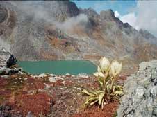Nandi Kund Trek Tour