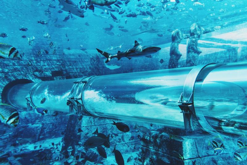 Aqua Venture Water Park