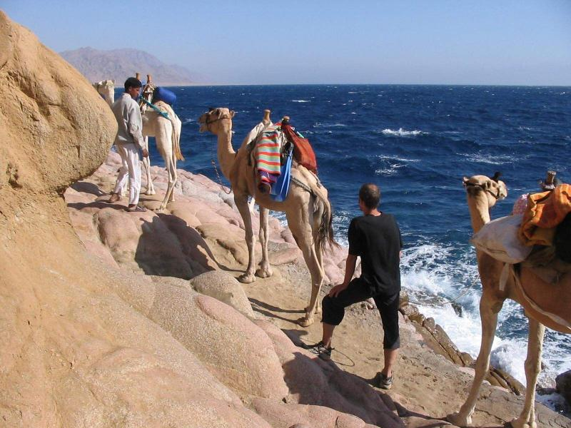 Cairo And Alexandria Tours From Hurghada