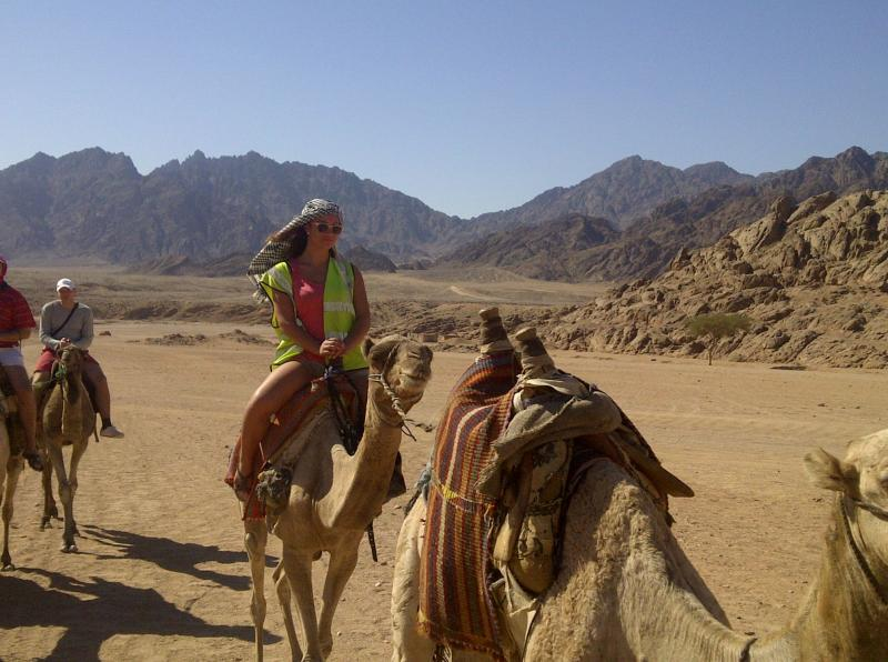 Safari Tours In Dahab From Sharm Marina