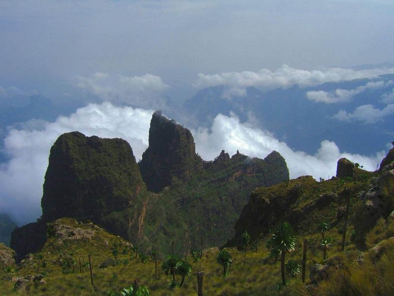 Bale Mountain Trekking Tours - 7 Days