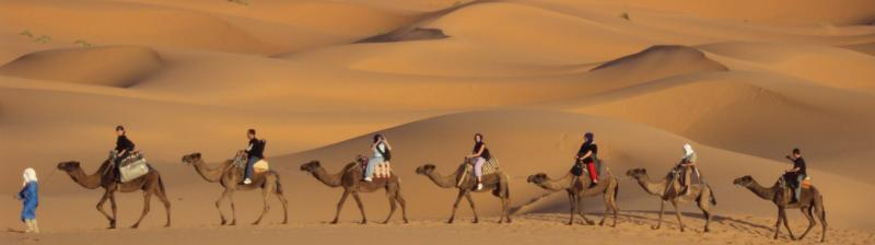 Marrakech Tour 8days Tour Package