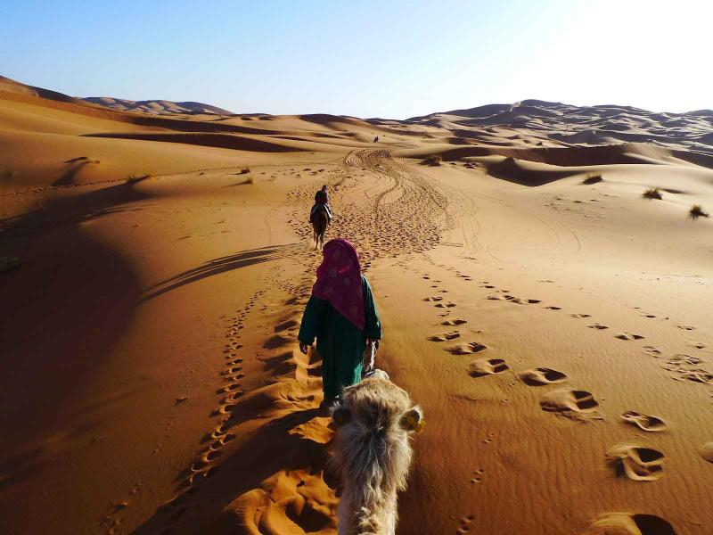 5 Days Marrakech, Coast, Mountain Package