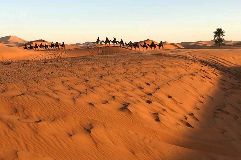 3 Days Desert Dream Package