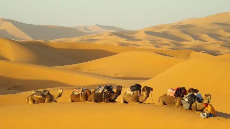 5 Days Desert Nomade Tour Package