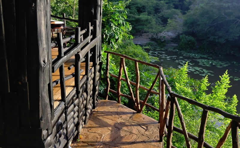 Shimba Forest Lodge Tour