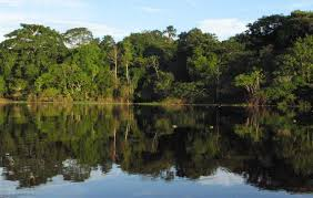 Pacaya Samiria National Reserve  Package
