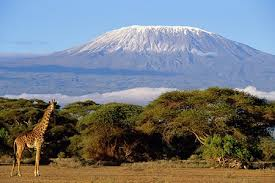 Grand Magical Kenya Experience Tour