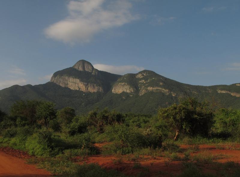 Taita Hills & Salt Lick Wildlife Sanctuary Tour