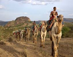 Camel Ridding Tour