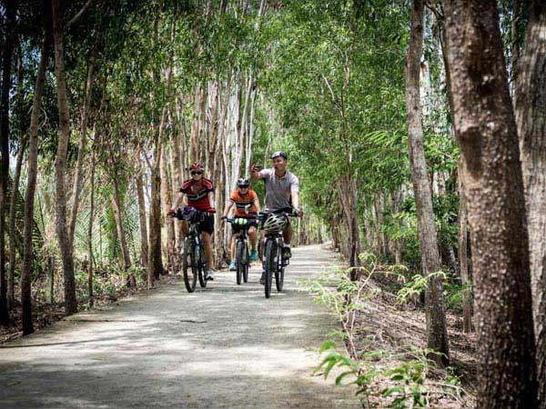 Clycling Tour In Mekong Delta Package