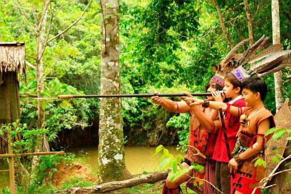 3D Kota Kinabalu Nature Tour