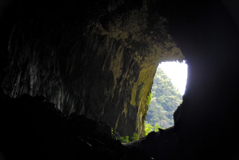 4d Mulu Show Caves & Pinnacles