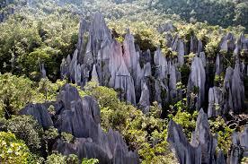 5D Mulu Show Caves & Pinnacles & Head Hunter Trail