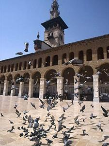 Grand Tour Of Syria 15 Days 14 Nights Package